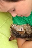 Chlapec spí s jeho kotě — Stock fotografie