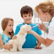 Kids with their pet at the veterinary doctor — Stock Photo #14293031