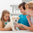 Kids at the veterinary doctor with their pet - Stock Photo