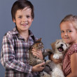 Beautiful kids with their lovely pets — Stockfoto