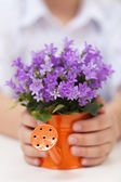 Fuzzy and warm spring concept — Stock Photo