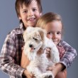 Stock Photo: Happy kids holding their new pet