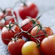 Fresh wet tomatoes on wet stone surface — Stock Photo