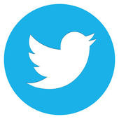 Moderne Twitter vogel Icon — Stockvector