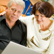 Cheerful senior couple working with laptop - Stock Photo