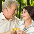 Senior couple celebrating with champagne, outdoors — Stock Photo #19631449