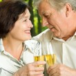 Senior couple celebrating with champagne, outdoors — Stock Photo #29176491