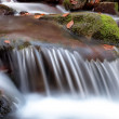 Autumn mountain stream — Stock Photo