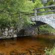 Stone bridge — Stock Photo #27950495
