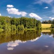 Sumer pond — Stock Photo