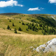 Slovak mountains — Stock Photo