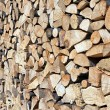 Block of wood — Stock Photo