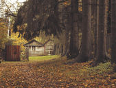 Cottage in forest — Stock Photo