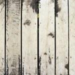 Grunge wood panels — Stock Photo #14716991