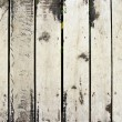 Grunge wood panels — Stock Photo #14716991