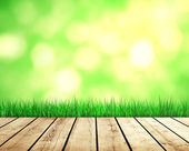 green grass and sunlight — Stockfoto