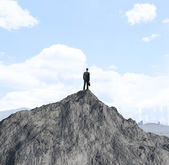 Businessman on mountain — Foto Stock