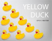 Many duck — Vetor de Stock