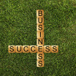 Success of business — Stock Photo