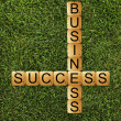 Success of business — 图库照片