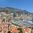Wide Panorama of Monaco Monte Carlo — Stockfoto