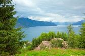 Esefjorden сверху, норвегия — Стоковое фото