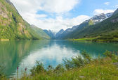 Picturesque scenery of norwegian fjord — Stock Photo