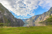 Norwegian fjord and mountain — Stock Photo