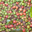 Background of coffee beans — Stock Photo #25846885