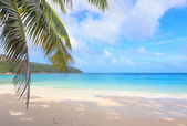 Tropical beach Anse Lazio, Seychelles — Stock Photo
