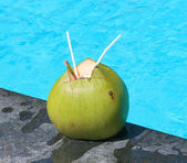 Close-up view of coconut with drinking straws — Stock Photo