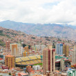 Постер, плакат: Sports stadium in La Paz Bolivia