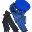 Dark blue scarf, beret and black woolen gloves — Stock Photo