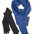 Dark blue scarf and black woolen gloves — Stock Photo