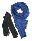 Dark blue scarf and black woolen gloves — Foto de Stock