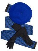 Dark blue scarf, beret and black woolen gloves — Photo