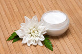 Natural moisturizing face cream — Stock Photo
