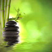 Bamboo trunks, fund spa decoration — Stock Photo