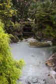Water pond in the garden — Stock Photo