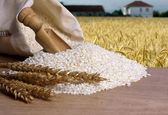 Natural brown rice — Stock Photo