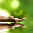 Renewable energy concept — Stock Photo