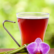 Stock Photo: Cup of tea, herbal hot drinks