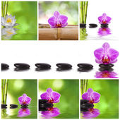 Funds set spa with flowers and stones — Stock Photo