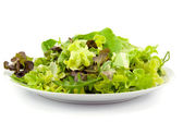Mixed fresh salad — Stock Photo