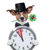 Orologio orologio con camino spazzatrice cane — Foto Stock