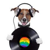音楽ヘッドホン ビニール レコード犬 — ストック写真