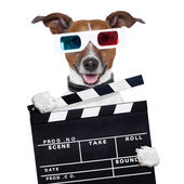 Movie clapper board 3d glasses dog — Stock Photo