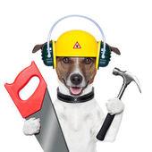 Köpek tamirciyle — Stok fotoğraf