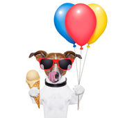 Dog with ice cream — Stock Photo