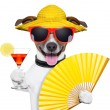Royalty-Free Stock Photo: Summer cocktail dog